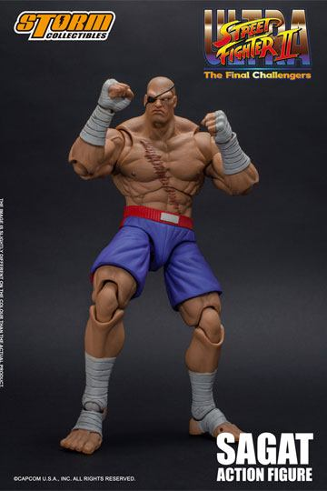 Ultra Street Fighter II: The Final Challengers Action Figure