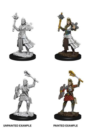 D&D Nolzur's Marvelous Miniatures Unpainted Miniatures