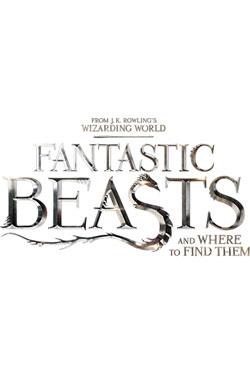 Fantastic Beasts Pint Glass Newt Scamander