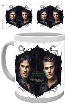 Vampire Diaries Mug Careful